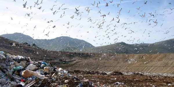 Discarica rifiuti